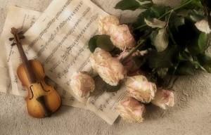 violin-2946996_640